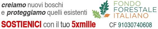 Fondo Forestale Italiano onlus alt