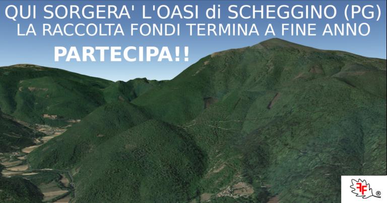 Contribuisci alla creazione dell'Oasi di Scheggino (PG) La raccolta fondi finisce il 31 dicembre